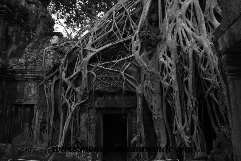 Siem Reap (246)