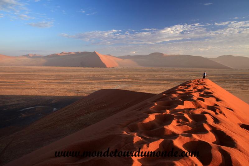 Désert de Namib (89)