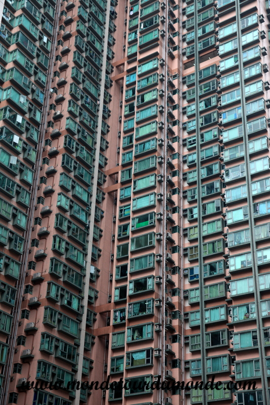 Hong Kong (107)