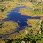 Okavango (13)