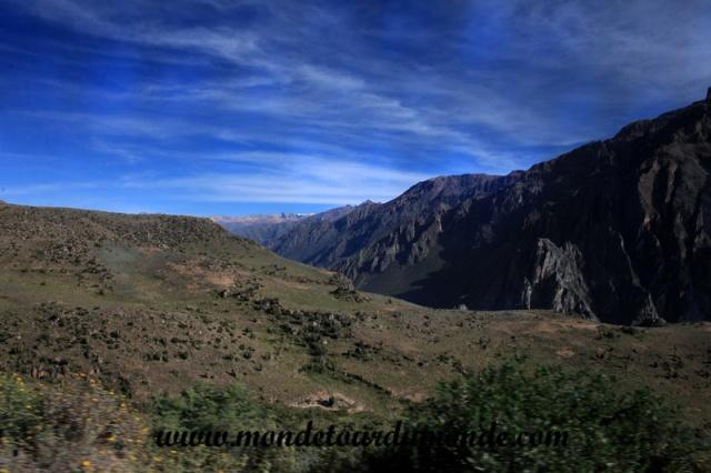 Colca Canyon (13).JPG