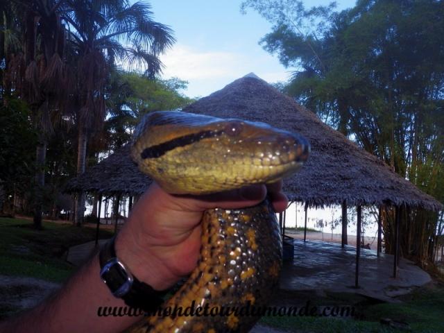 Iquitos (170).JPG