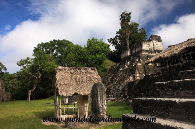 Tikal (31).JPG