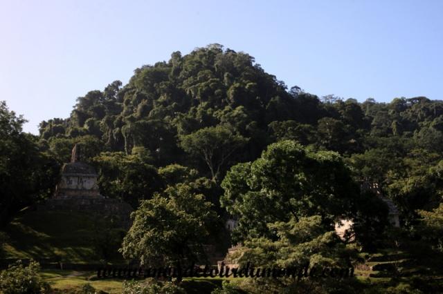 Palenque (16).JPG