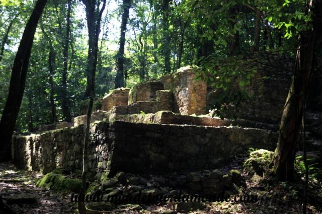 Palenque (44).JPG