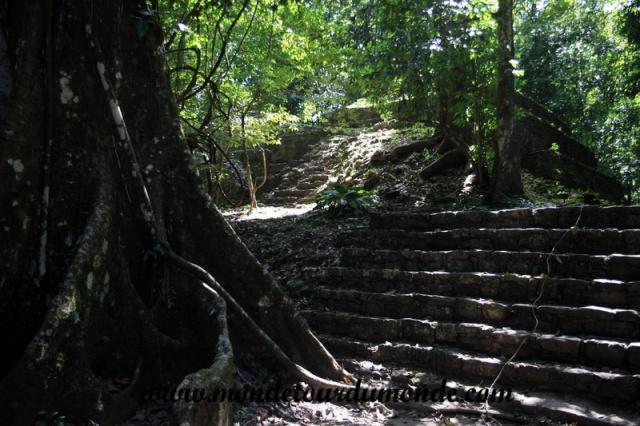 Palenque (45).JPG