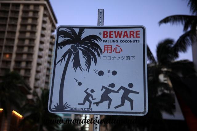 Honolulu (103).JPG
