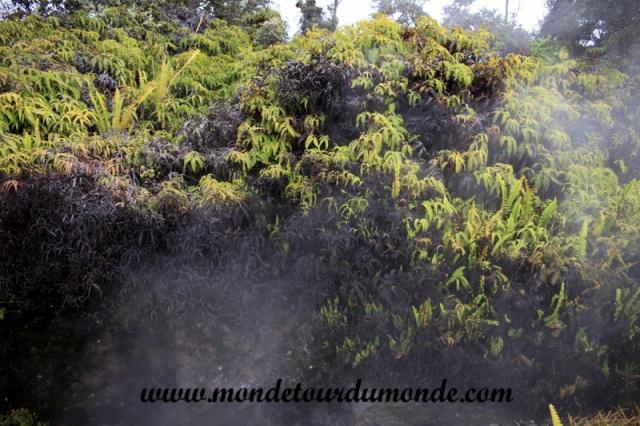 Volcanoes Park (8).JPG
