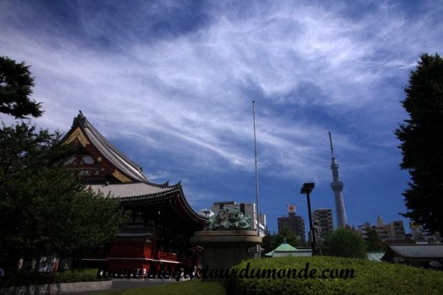 Tokyo (149).JPG