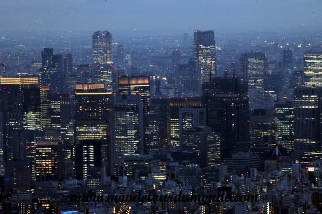 Tokyo (211).JPG
