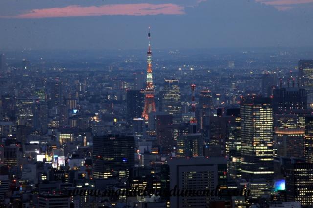 Tokyo (213).JPG