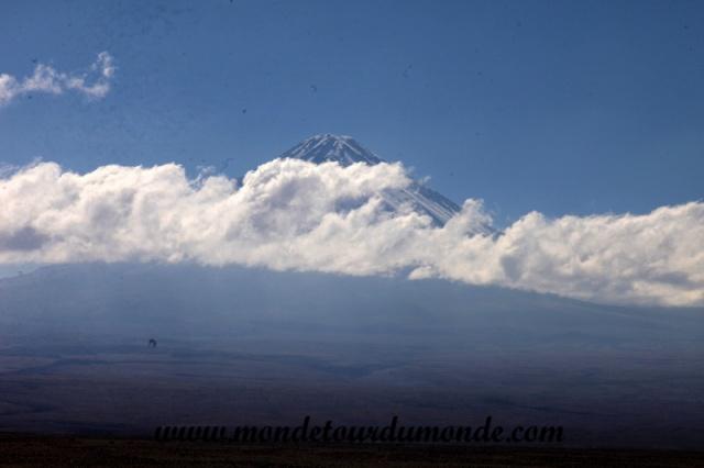 Atacama (132).JPG