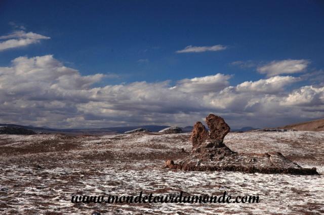 Atacama (207).JPG