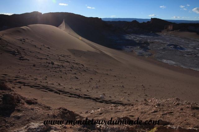 Atacama (230).JPG