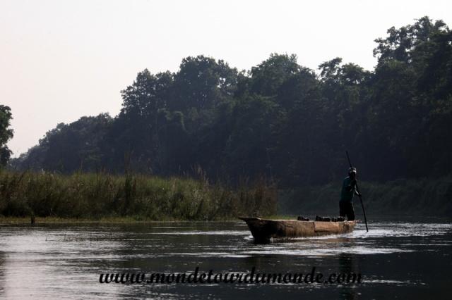 Chitwan (52).JPG