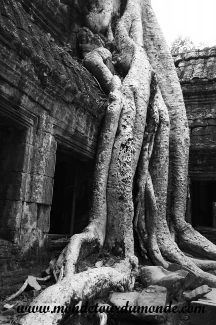 Siem Reap (215).JPG