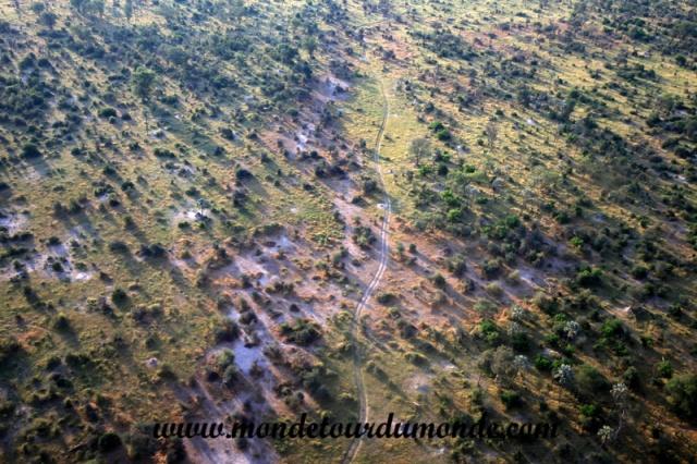 Okavango (45).JPG