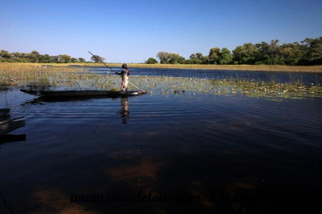 Okavango (73).JPG