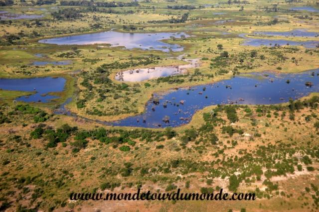 Okavango (9).JPG