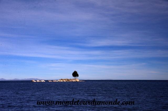 Lac Titicaca (3).JPG