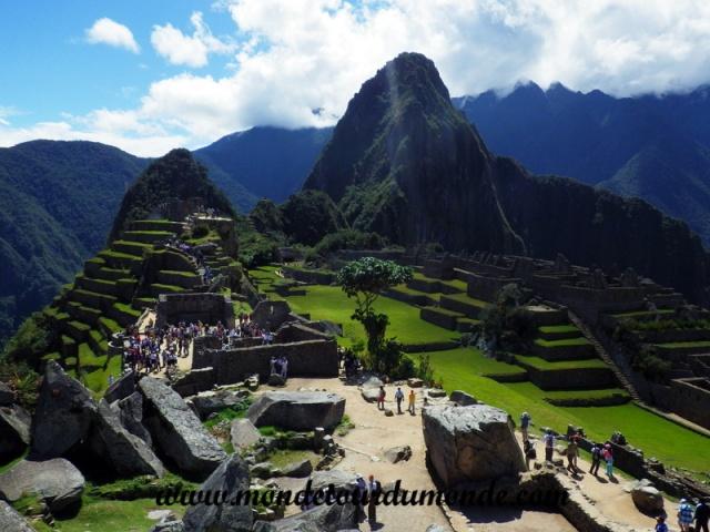 Machu Picchu (117).JPG