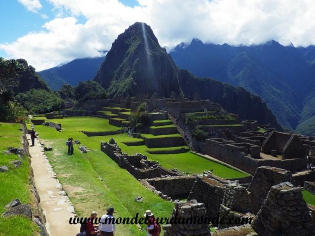 Machu Picchu (119).JPG