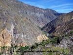 Colca Canyon (126).JPG