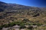 Colca Canyon (147).JPG