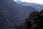 Colca Canyon (44).JPG
