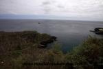 Galapagos (95).JPG