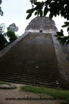 Tikal (36).JPG