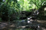 Palenque (59).JPG