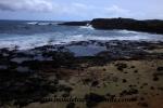 Hawai'i (3).JPG