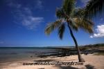 Hawai'i (41).JPG