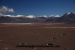 Atacama (141).JPG