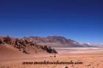 Atacama (150).JPG