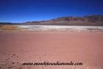 Atacama (171).JPG