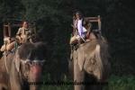 Chitwan (14).JPG