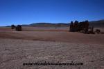 Atacama (152).JPG