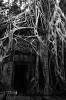 Siem Reap (137).JPG