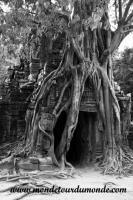 Siem Reap (204).JPG
