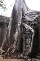 Siem Reap (236).JPG