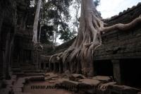 Siem Reap (254).JPG