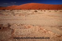 Désert de Namib (118).JPG