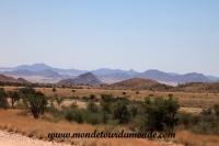 Désert de Namib (13).JPG