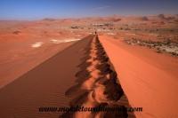 Désert de Namib (130).JPG