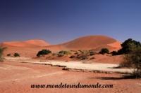 Désert de Namib (137).JPG