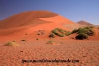 Désert de Namib (140).JPG