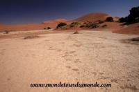 Désert de Namib (143).JPG