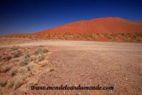 Désert de Namib (170).JPG